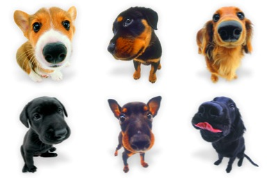 Free Icons: Iconset: Dogs N Puppies Icons by Wackypixel | Animals