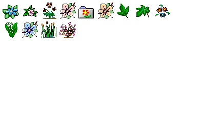 Iconset: Flower 1 Icons by Ilicon