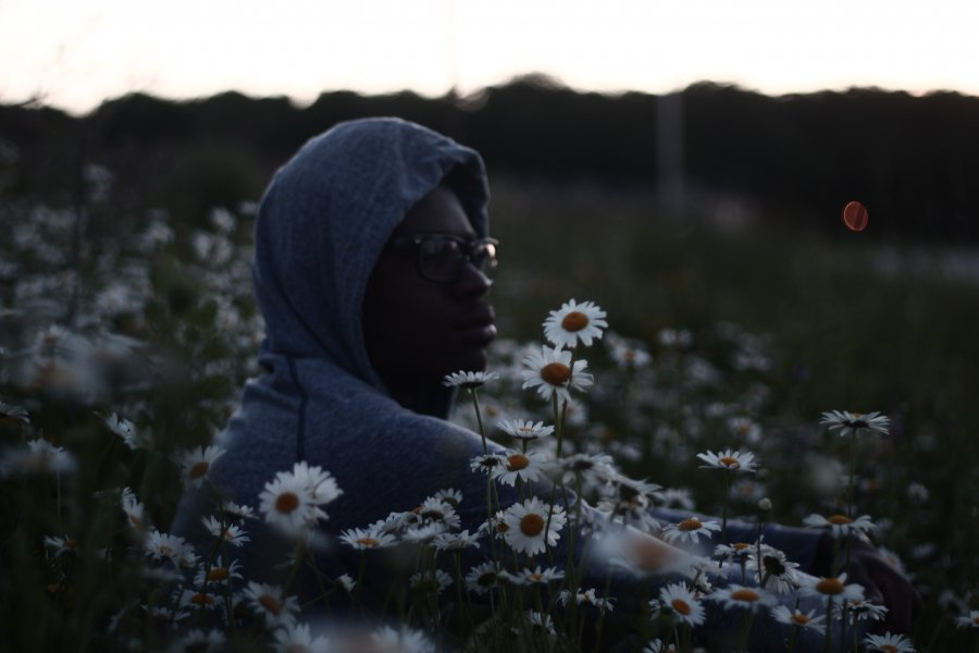 Free Photos: Young boy sitting in the field of flowers | Nature | Wellington Sanipe