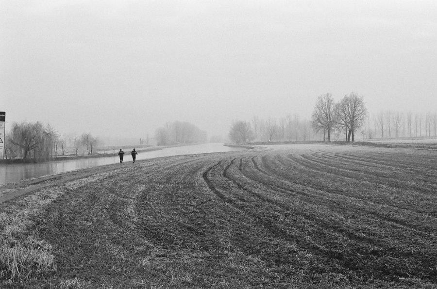 Free Photos: People running near a lake in winter   Nature   Stefania Bonacasa