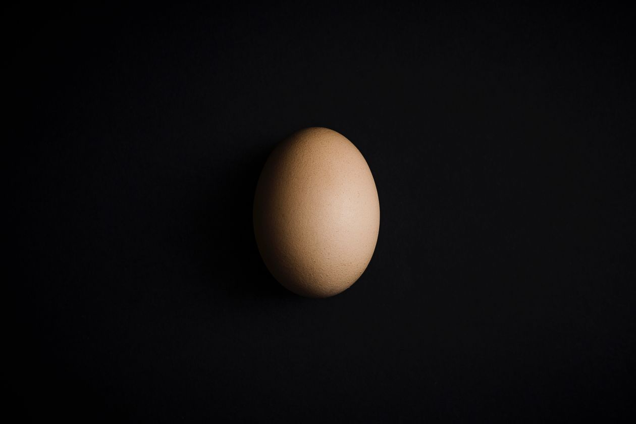 Free Photos: An egg | Michał Grosicki