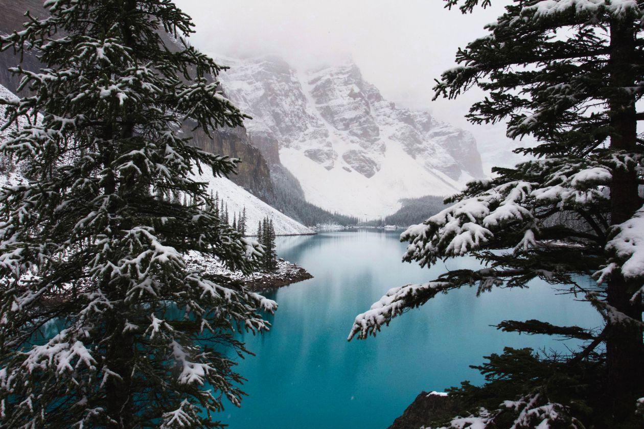 Free Photos: Lake Louise | Andreea Chidu