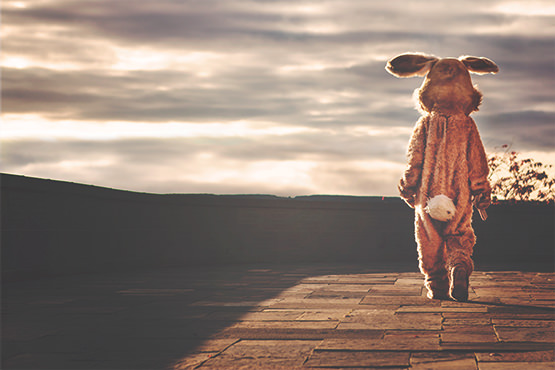 Free Man in rabbit costume looking at the sky