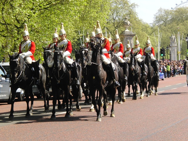 Free horseguards london changing of the guard horses