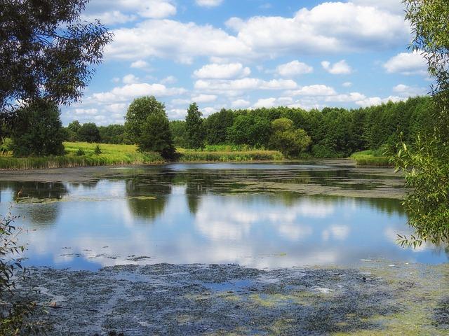 Free ukraine pond water reflections landscape scenic