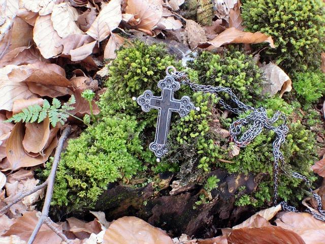 Free cross crucifix moss root leaves log tree stump