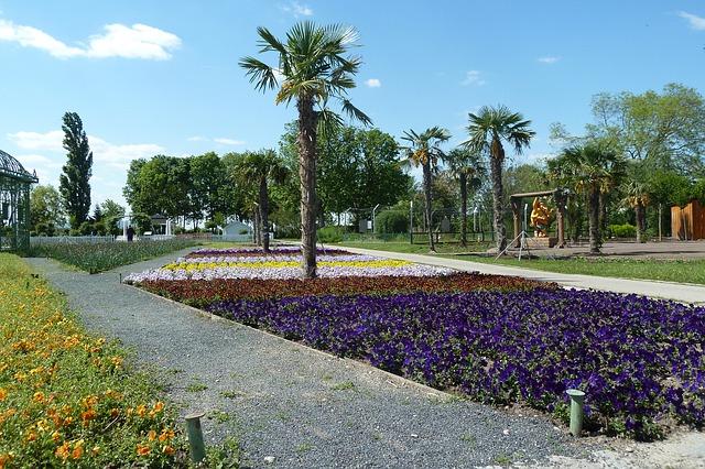 Free Photos: Flower gardens deer stetten spring flower bed palm | Kit
