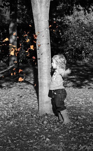 Free boy leaf autumn fall baby boy child cute kid