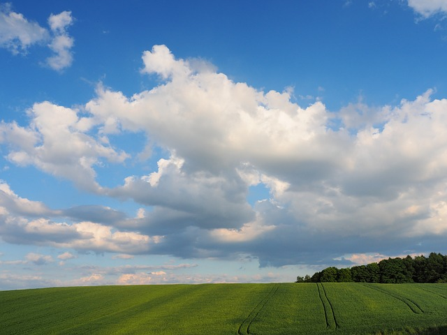 Free blue sky clouds field landscape grass green