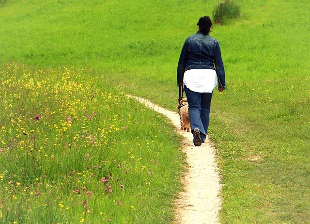 Free away trail person woman dog immediately walk