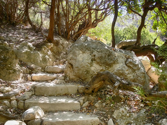 Free rock stairs rise bergtour scree landscape nature