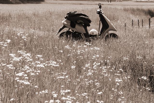 Free roller motor scooter meadow atmosphere mood