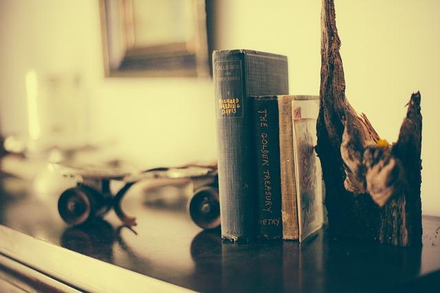 Free book shelf books reading interior decoration