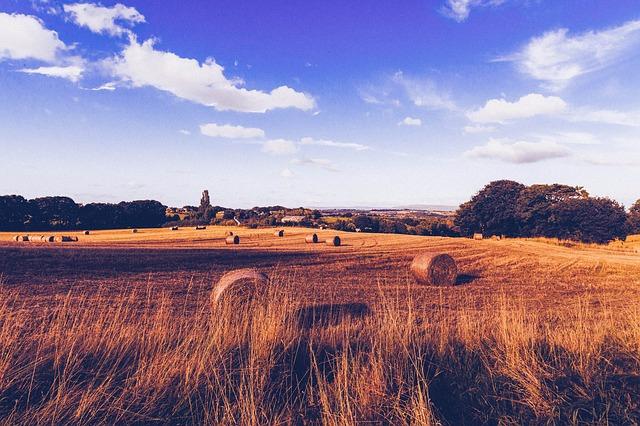 Free farmland hay bales hay field herbage pasture