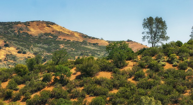 Free del puerto canyon mountains landscape scenic nature