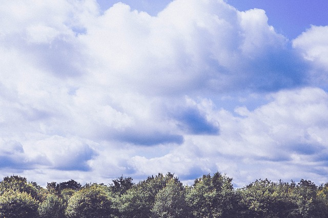Free clouds sky forest weather