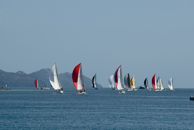 Free regatta sailing boat race sailing boat sails ocean