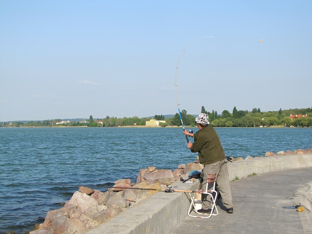 Free angler fishing rods water part lake balaton pier