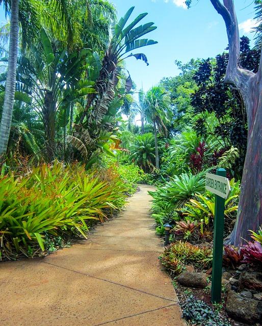 Free kauai hawaii botanical garden poipu