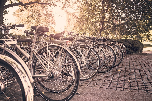 Free bicycles bikes outdoors sports cycling