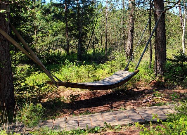 Free relaxation swing hammock rest sleep forest