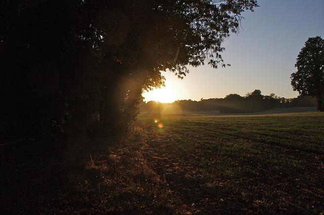 Free sunset sun twilight evening