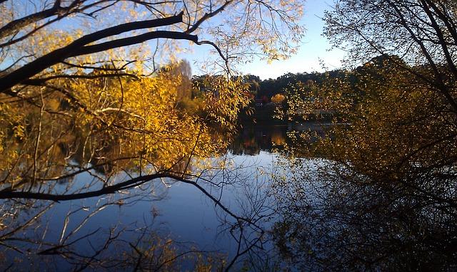 Free Photos: Daylesford lake water scenic australia | Tetyana Gimgina