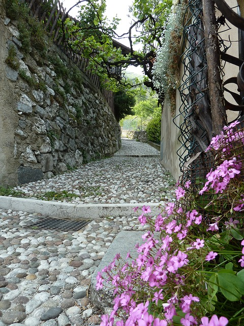 Free flower stone mediterranean flora garden alley