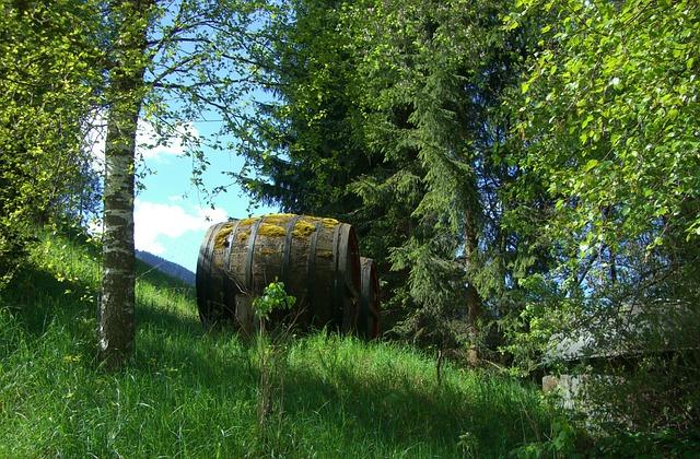 Free beer keg barrels beer wood nature moss meadow