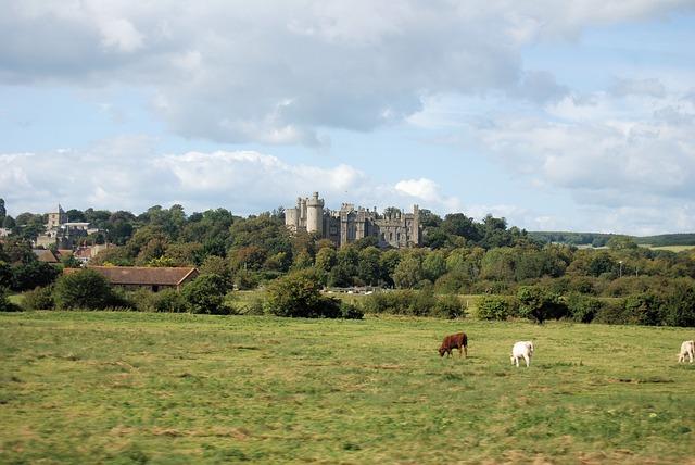 Free castle tower historical arundal landmark scenic