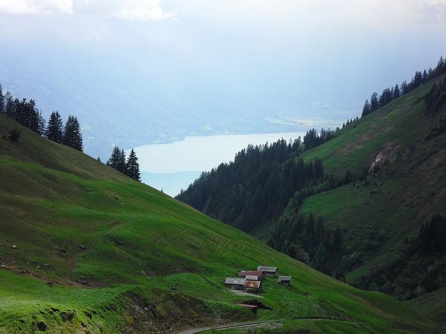 Free alm landscape alpine mountains meadow