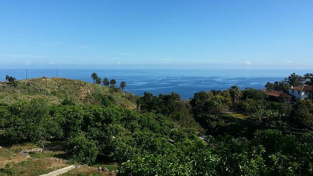 Free tenerife nature landscape