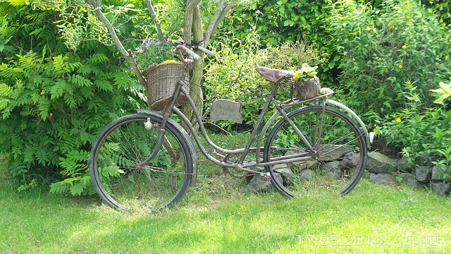 Free bike nature rest