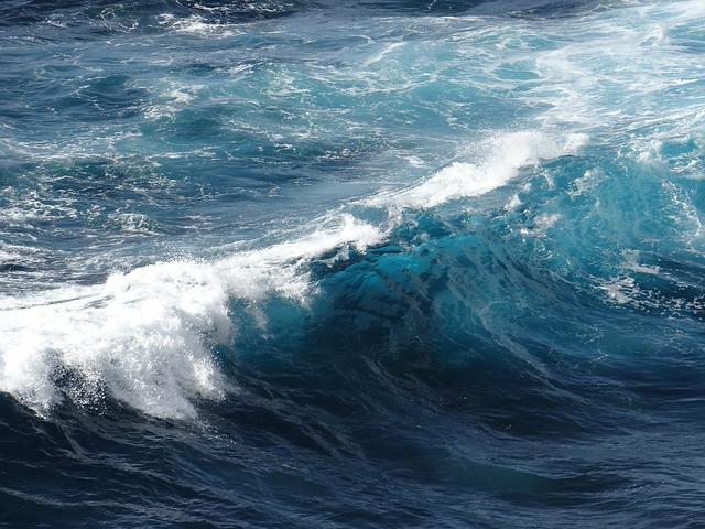 Free wave sea ocean water wet nature waves close up