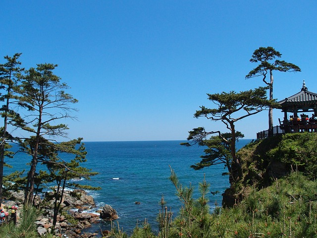 Free gangwon do sokcho naksansa sea belvedere cliff