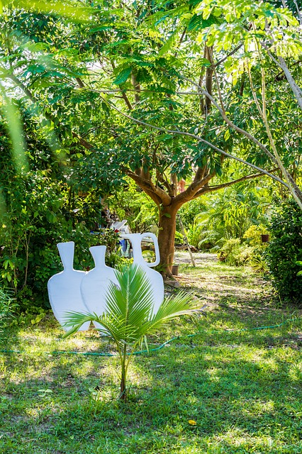 Free Photos: Garden nature horticulture | Josch13