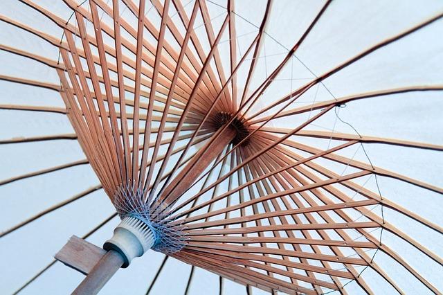 Free umbrella spokes canopy structure circle asian