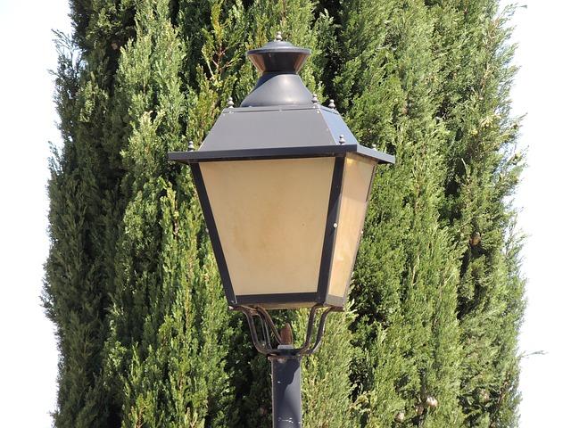 Free street lamp background light tree contrast lantern