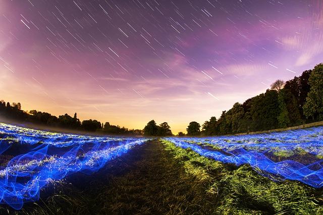 Free               stars field long exposure night lights motion