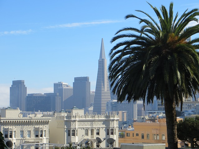 Free san francisco california usa transamerica pyramid