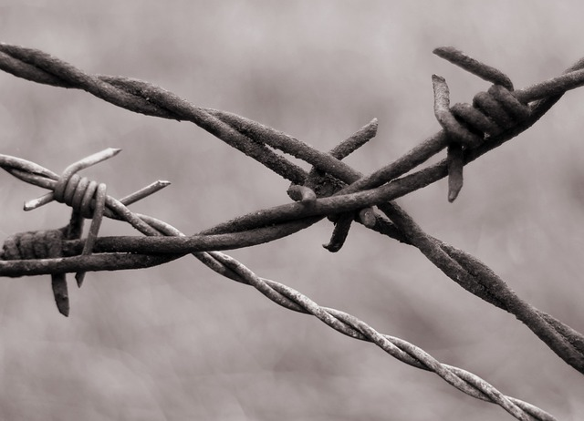 Free barbed wire close wiring limit demarcation fence