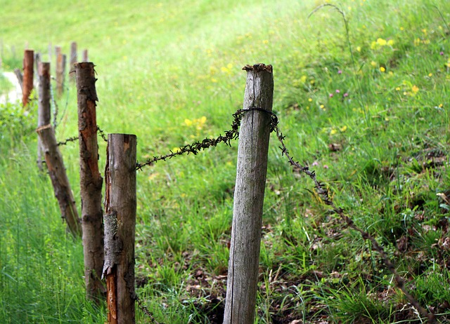 Free meadow pasture fence barbed wire wiring limit