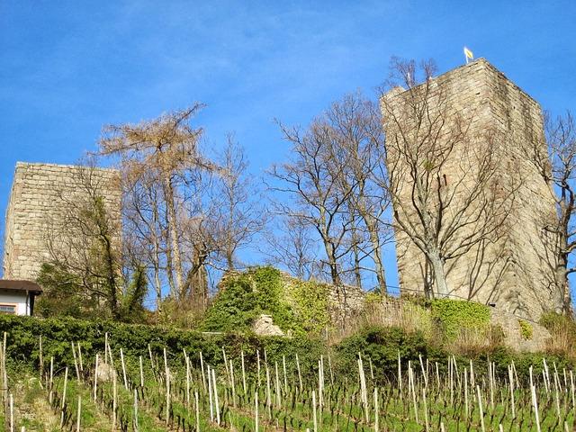 Free windeck castle bühl swim black forest