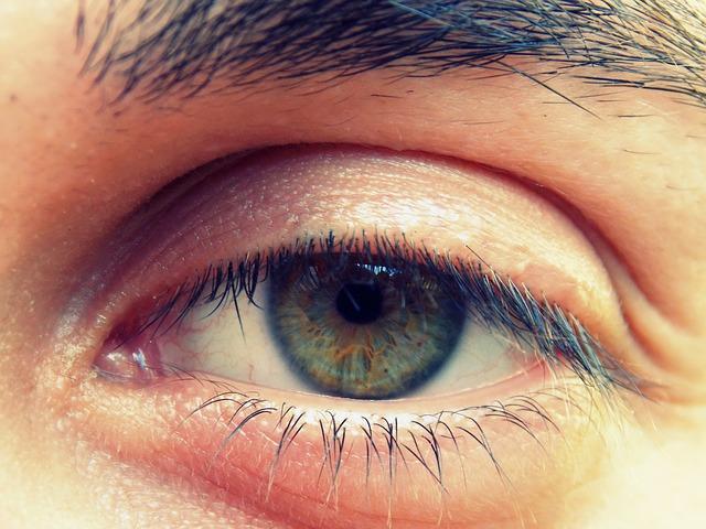Free eye iris viewing eyes eye lashes green