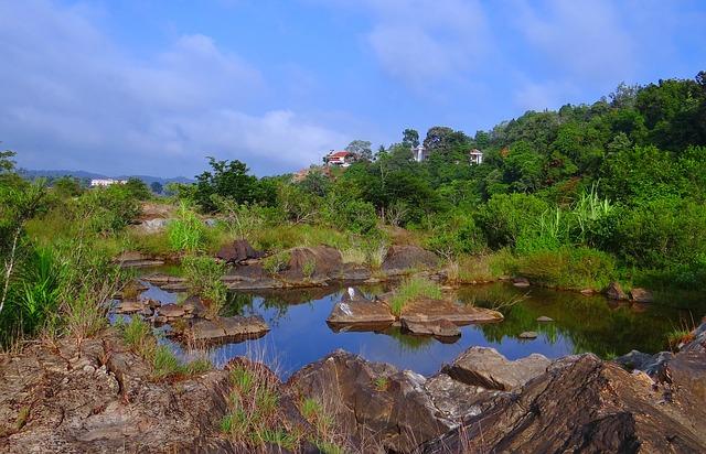 Free evergreen forest western ghats sharavati river