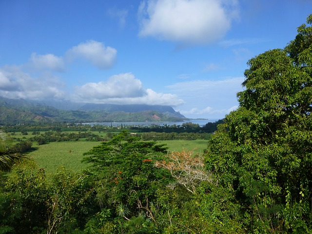 Free kauai hanalei hawaii farm land countryside