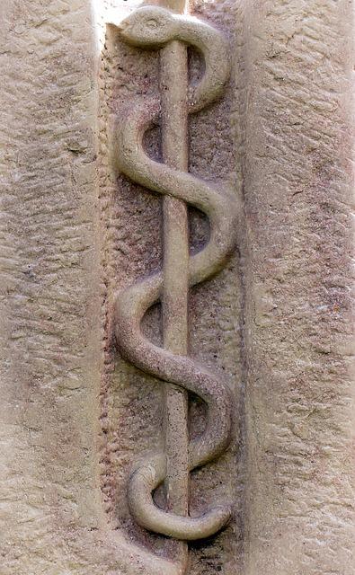 Free relief symbol rod snake äskulapstab