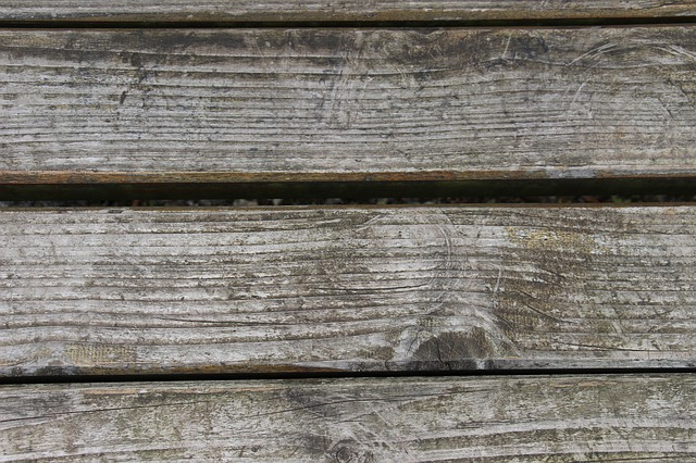 Free wood wooden wall texture structure background