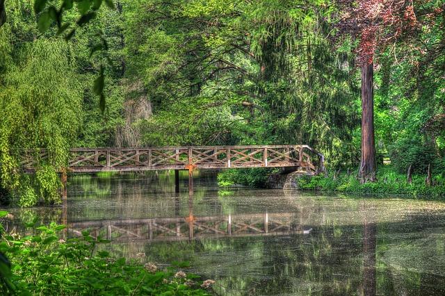 Free lake forest bridge