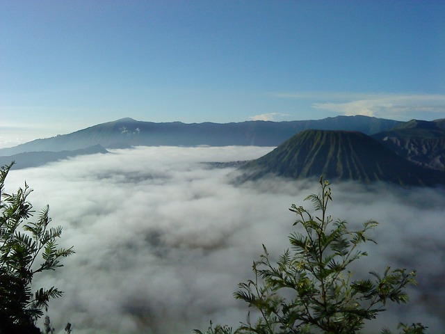 Free mount shell bromo cloud